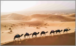 4 day Tour from Chefchaouen to Merzouga and Marrakech