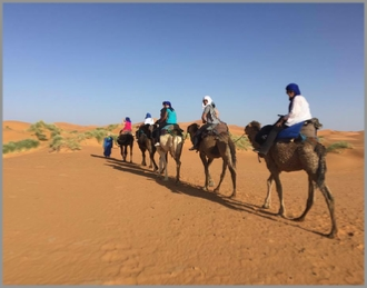 Tour from Ouarzazate