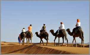 Best Morocco Private Tours - Local Morocco Guide,private Marrakech tours to Sahara